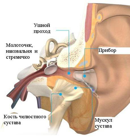 arcízület ízületi gyulladásának kezelésére szolgáló készítmények