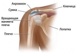 csípő chondromatosis kezelése kenőcs térdízületi gyulladás esetén