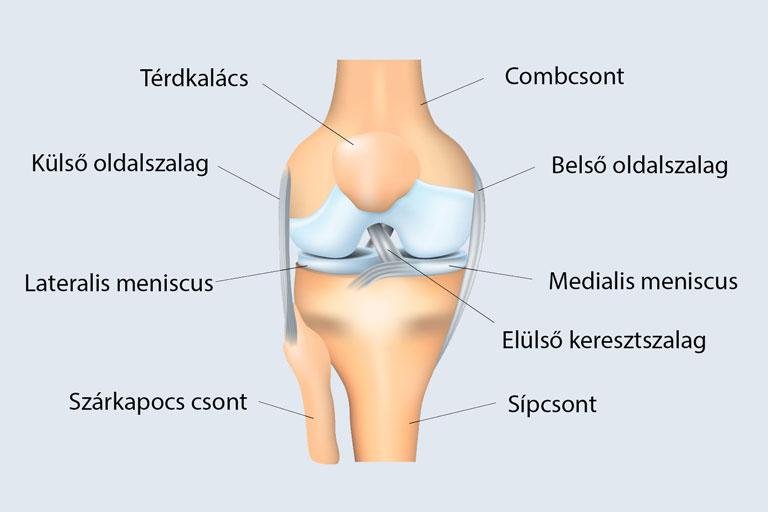 mindkét térdízület ízületi kezelése a jobb térdízület artrózisa 2 fok