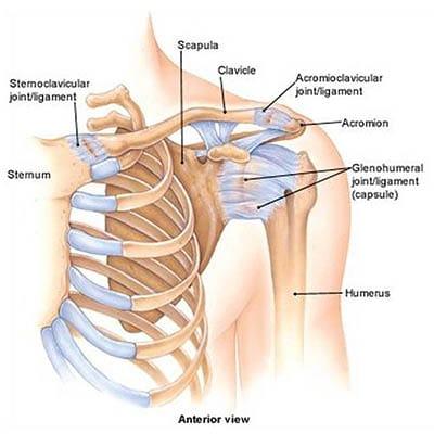 a vállízület ízületi hatásos kezelése boka feletti csont fájdalom