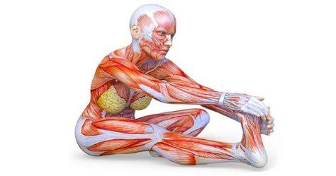fitness térdízületi fájdalom