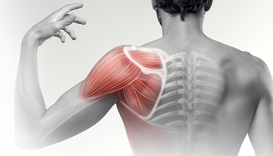 Mozgásterápia a mozgásszervi panaszok leküzdésére