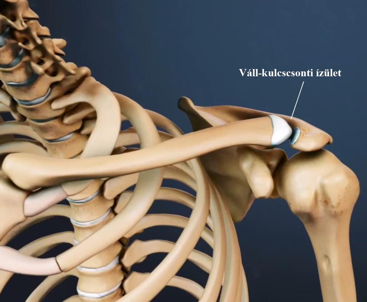 Kínai ortopéd folt Zb fájdalomcsillapító - Csukló