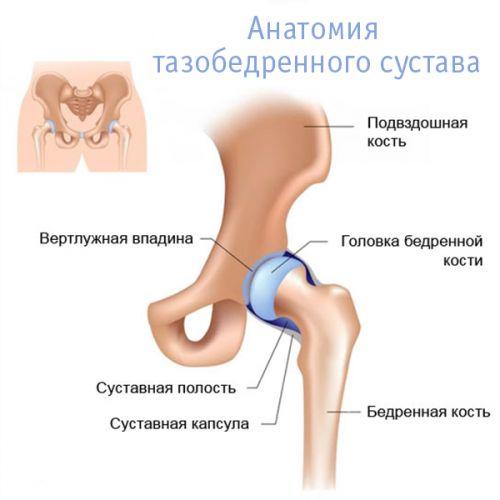 Vese artrózissal