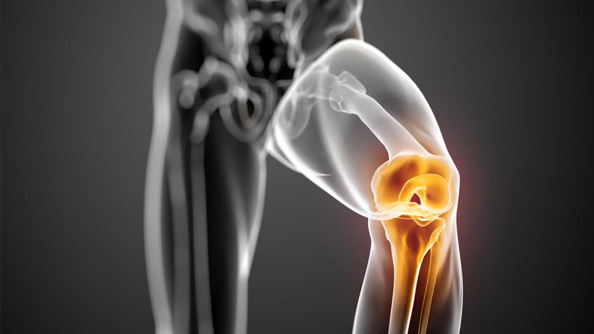 testépítés ízületi fájdalom