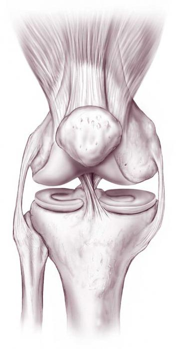 A térdízületek gonartrózisa 2 fok: okok, tünetek, kezelés - Arthritis July