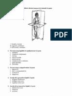 Gy__gymassz__r-kidolgozott-sz__beli-t__telek-pdf.pdf