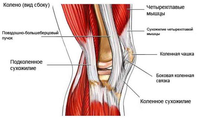 a térd belső ligamentumainak károsodása