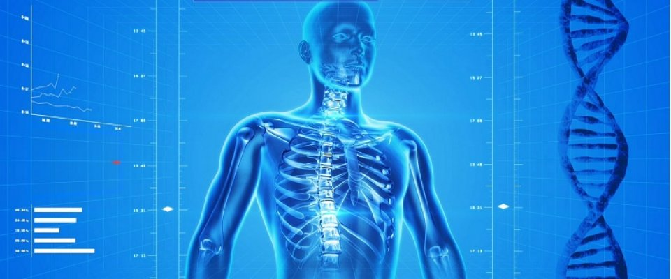 a leghatékonyabb gyógyszer az ágyéki csontritkulás kezelésére kenőcs a gerinc artrózisának kezelésére