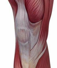 A medialis meniszkusz hátsó szarvának sérülése - Köszvény