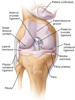 a térdízület meniszkusz károsodása és az ízületi szakadás