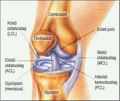 térdízület deformáló ízületi ízületi kezelése a láb ízületeinek gyulladása