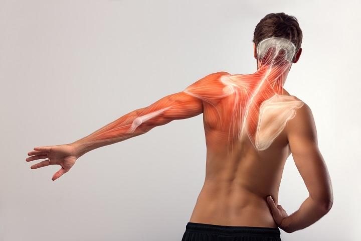 szúr a jobb vállán gyakorlatok térdfájdalomra
