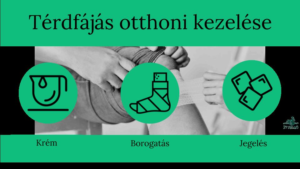SpineArt - Az Izületek Megóvása Biciklizés Közben | dynarec.hu