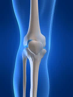 testépítés és ízületi fájdalmak