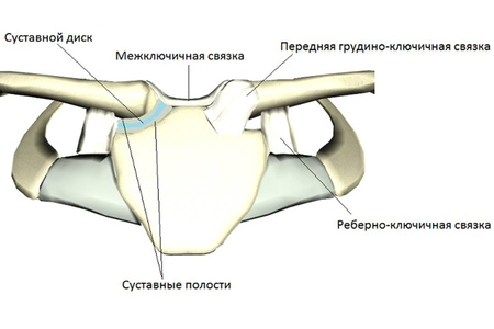 a boka ízületének kötéseinek károsodása