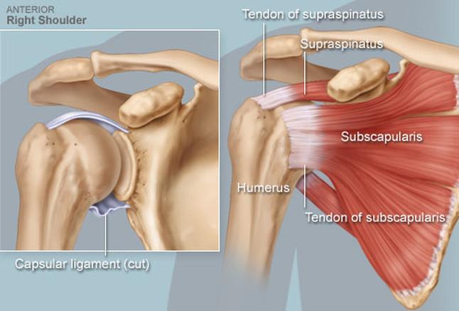 fájdalom a vállízület pszichoszomatikájában denas az artrózis kezelésében