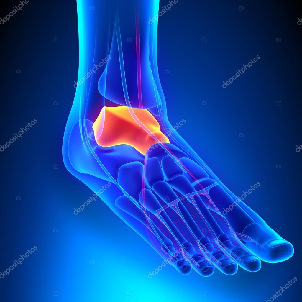 megfagyott a lábak fájó ízületei hogyan lehet enyhíteni a térdízületek akut fájdalmát