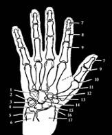 az ujjak ízületei fájnak és viszketnek