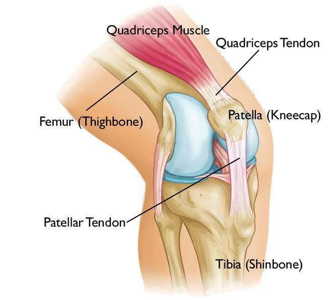 térdízület fájdalomcsillapítás áttekintés
